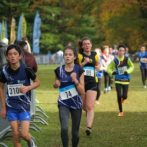 2017 11 Cross La Chantrerie (PE)